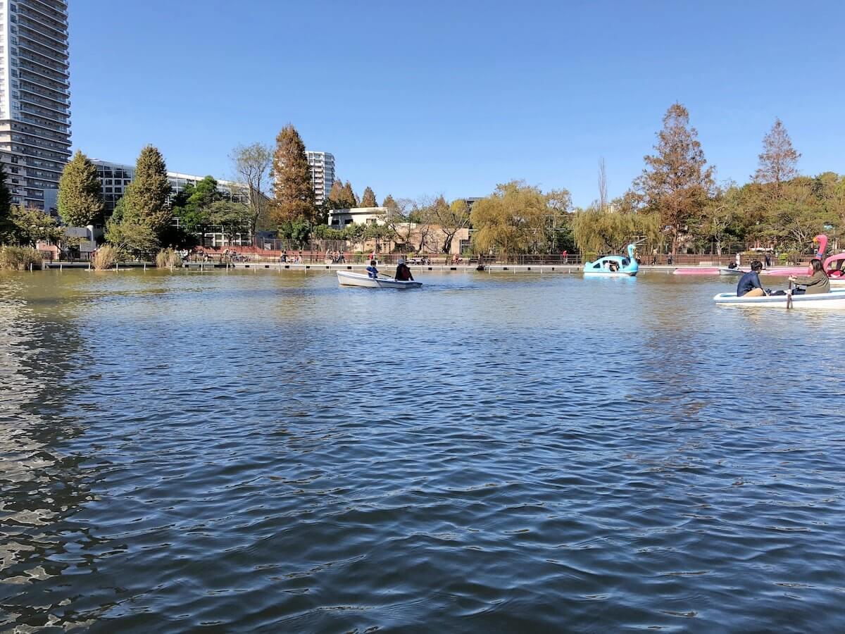上野公園のボートの様子